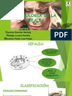 Semiologia de La Cefalea