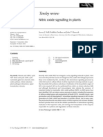 Nitric Oxide Signalling in Plants