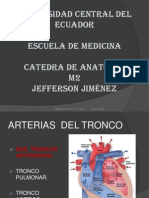 Arterias Del Tronco