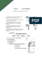 Esofago y Glandulas Salivales