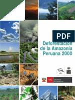 DEFORESTACION y Areas Naturales Protegidas _Parte1[1]