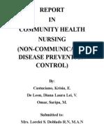 Public Health Nursing in The