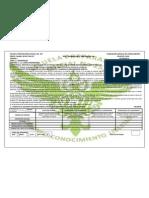 Plan de Clase HBP  Actividad 8