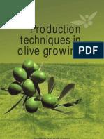 Olivicultura Ingles[1]
