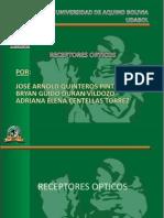 presentacion-receptores-opticos2003