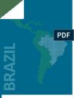 2.3 Brazil – The Risk of Corruption in Public Procurement in Brazil