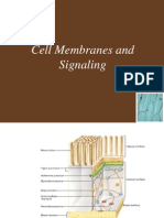 Ch05 Lecture-Cell Membranes and Signaling-1