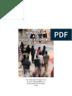 Denegri, M. (2004). Introducción a la psicología económica. Psicom editores.