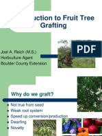 Introduction to Fruit Tree Grafting