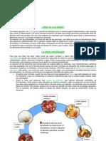 Alimentos a Modelo