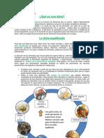 Alimentos B Modelo Alimentos 5to B