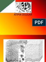 Atipia Celular Exposicion