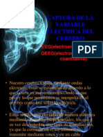 Captura de La Variable Electrica Del Cerebro