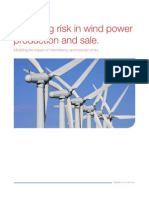 Wind Farm Modeling