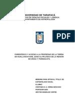 PARENTESCO Y ACCESO A LA PROPIEDAD DE LA TIERRA  EN HUALLANCAYANE, ZONA ALTIPLÁNICA DE LA REGIÓN  DE ARICA Y PARINACOTA