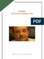 Poemas de  António manuel pina