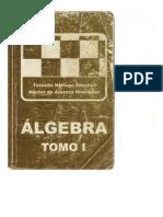 Algebra Tomo I