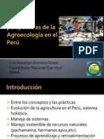 16 Luis Gomero - Perú