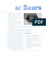 Polar Bears Fact File