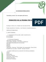 Principio de Prueba-1¨