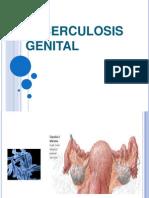 10.Tuberculosis Genital(1)