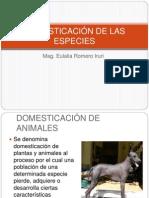 DOMESTICACIÓN DE LAS ESPECIES