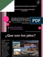 FACTORES GEOLÓGICOS Y CLIMÁTICOS QUE DETERMINAN LA PELIGROSIDAD Y ELIMPACTO AMBIENTAL DE JALES MINEROS