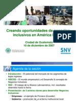 Negocios Inclusivos en Latinoamerica