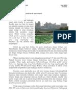 Clean Development Mechanism Di Indocement