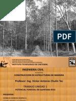 Potencial Forestal en Quintana Roo