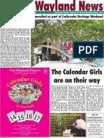 The Wayland News November 2012