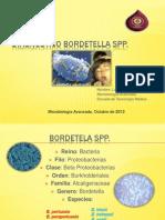 Diagnóstico de Género Bordetella spp. Luis Colihuinca Llancapan