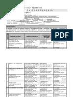 Carta Descriptiva Enfermeria