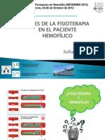 Bases de la fisioterapia en paciente hemofilico. Dra Sofia Pérez (INFOHEMO 2012) 24.10.12