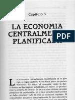 4 5 Capitulo 3 Economía Planificada