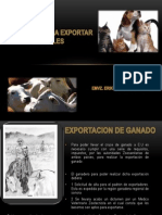 Requisitos Para Exportar Animales