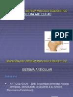 3 Sistema Articular