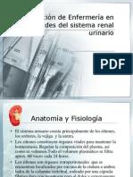Intervenciones de Enf[1]. Sistema Urinario Ppt