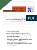 Identificacion e Intervencion Inteligencia Limite