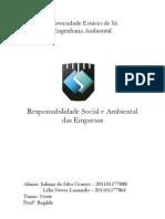 Responsabilidade Social e Ambiental Das Empresas