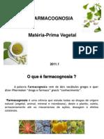 Aula 1 Materia Prima Vegetal1