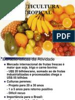 Fruticultura Introdução