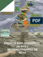 Presentación_Resultados_Fundacruz_inv-05