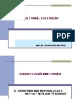 NVM-Plani i Biznesit  7.0 Struktura e Planit te  Biznesit