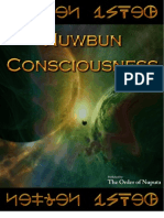Nuwbun Consciousness