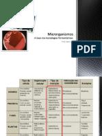 Aula - Introdução - Microrganismos - Tec. da Fermentação