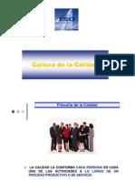 Cultura de La Calidad y Promotores de La Calidad