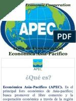Exposicion APEC