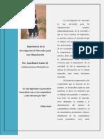 Ana.articulo.importancia de La Investigacion de Mercados