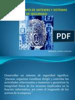 Mantenimiento de Sistemas y Sistemas de Seguridad